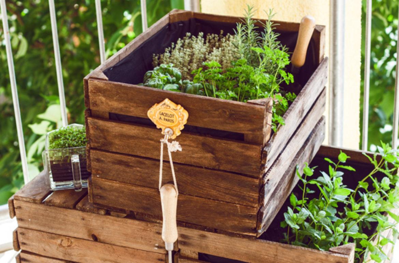 Gemeinsame DIY: Kräutergarten aus Weinkisten für den Balkon • Always like a #CI_38